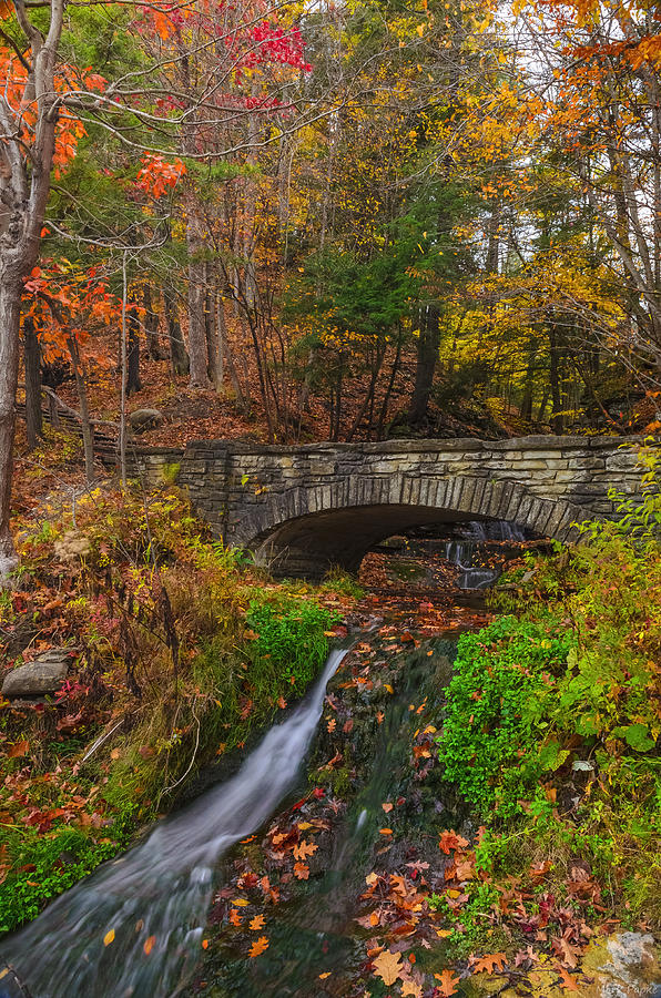 Letchworth State Park Photograph - Over The Stream by Mark Papke