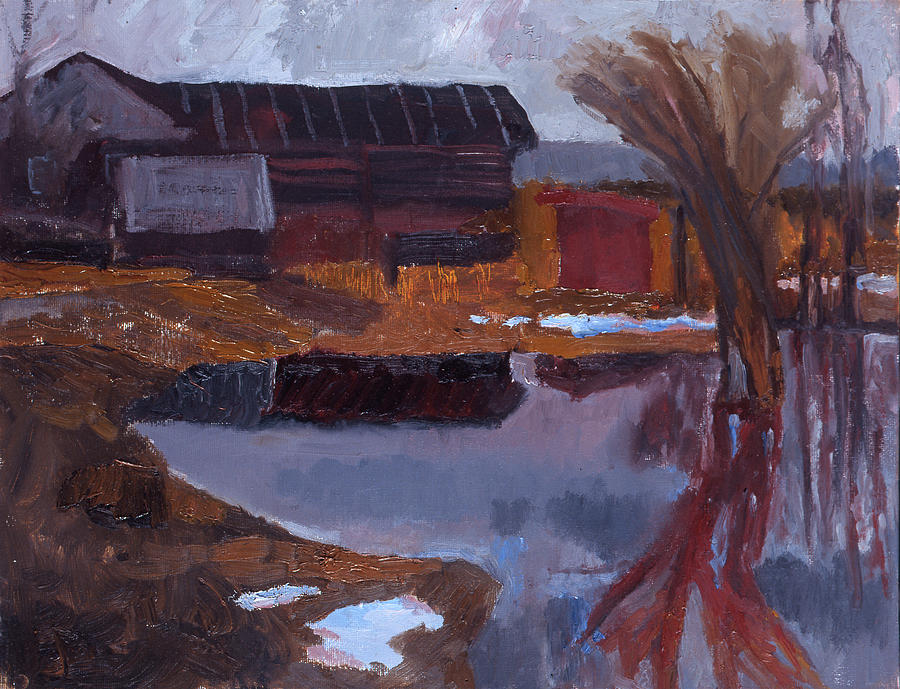 Overflow of the Sharitsa river by Yana Poklad