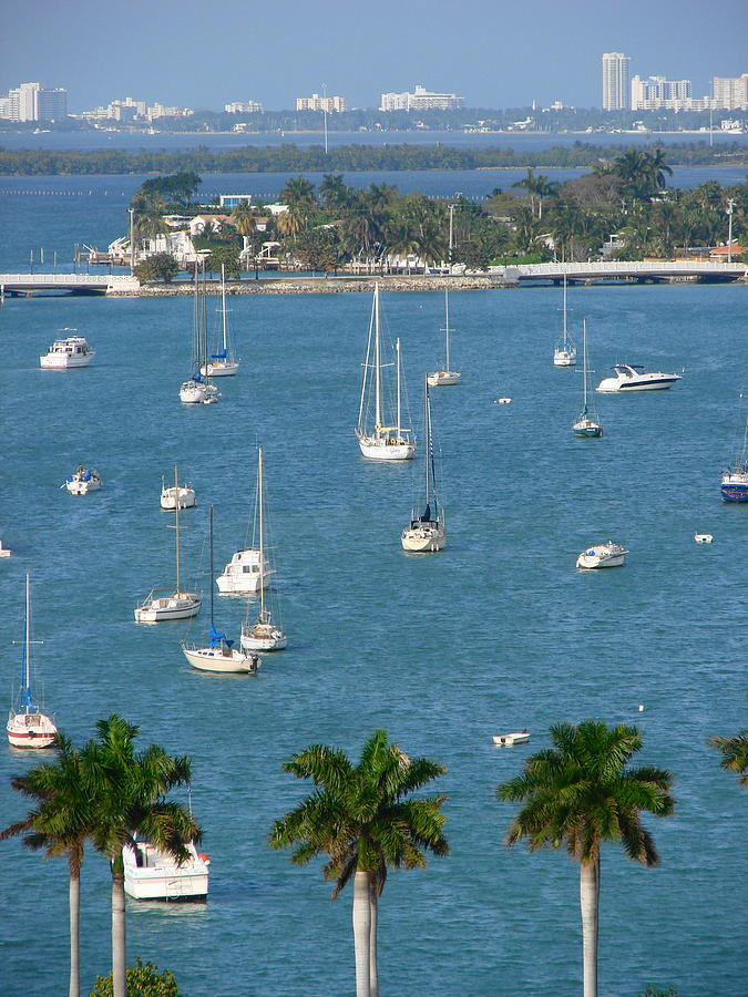 Landscape Photograph - Overlooking A Miami Marina by Margaret Bobb