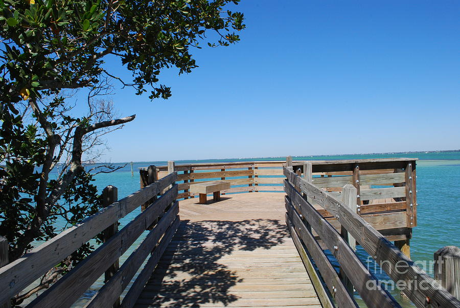 Blue Photograph - Overlooking Sarasota Bay by Gary Wonning