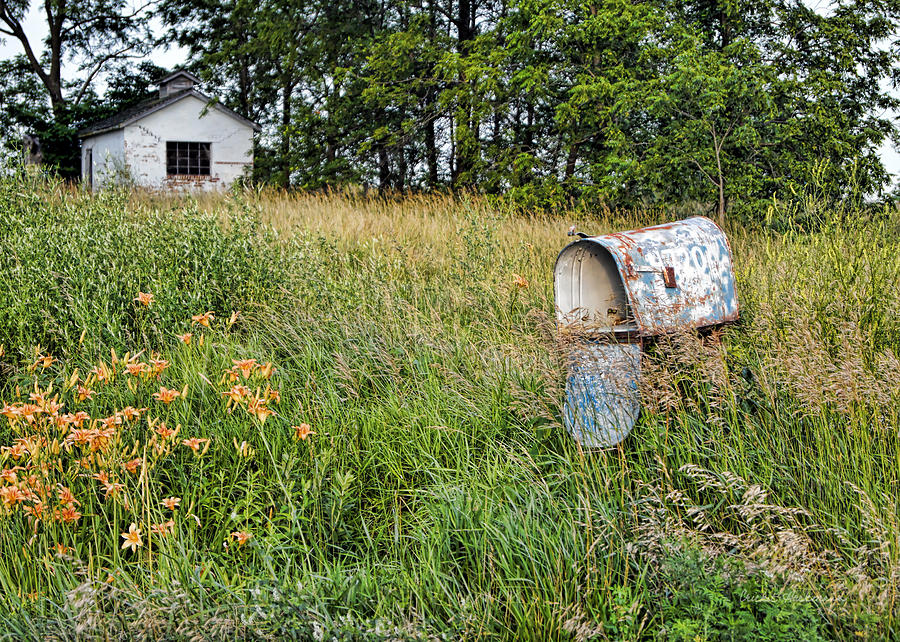 Mailbox Photograph - Overtaken By Time by Cricket Hackmann