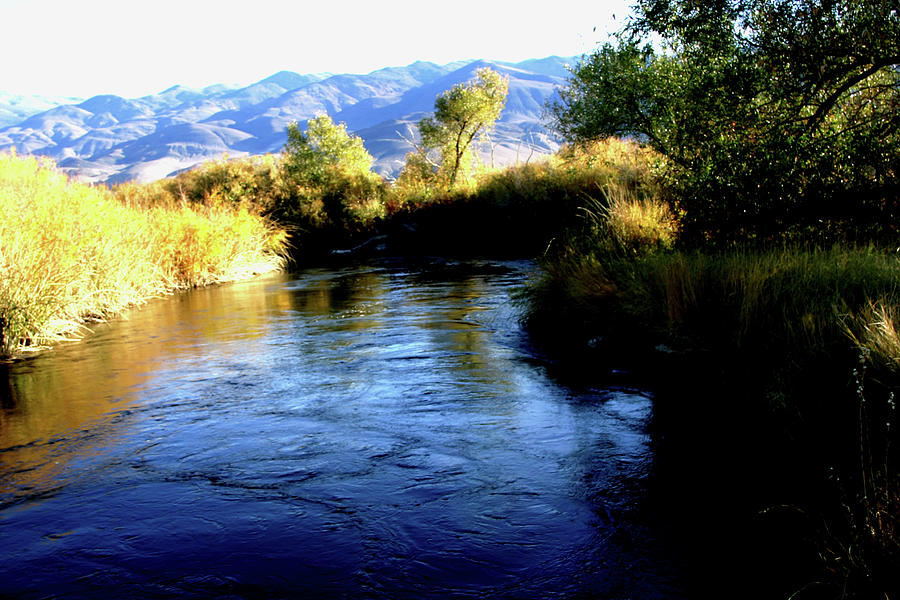Owens River Photograph - Owens 0038 by Leonard Frederick