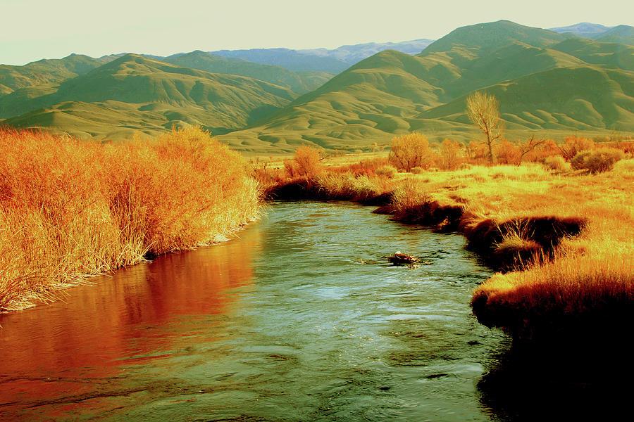 Owens River Photograph - Owens 0040 by Leonard Frederick