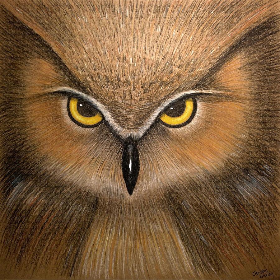 Owl Painting - Wise Eyes by Christie Nicklay