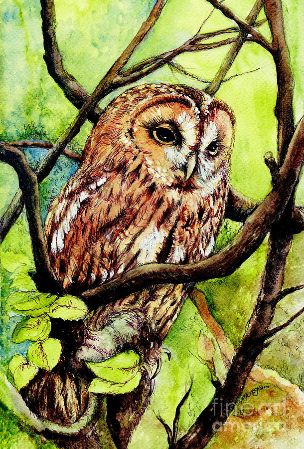 Bird Painting - Owl From Butterfingers And Secrets by Morgan Fitzsimons