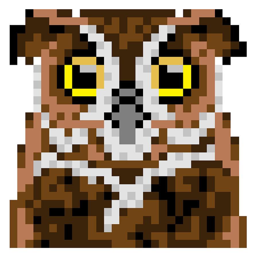 Owl Digital Art - Owl by Gerald Lynch