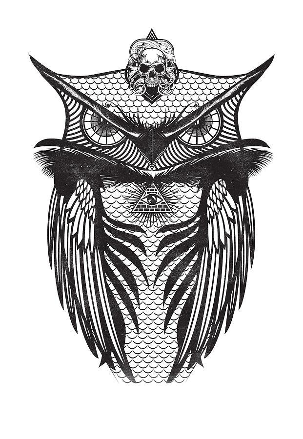 owl illustration by IamLoudness Studio