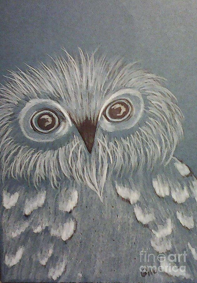 Owl Drawing - Owl In The Blue by Ginny Youngblood