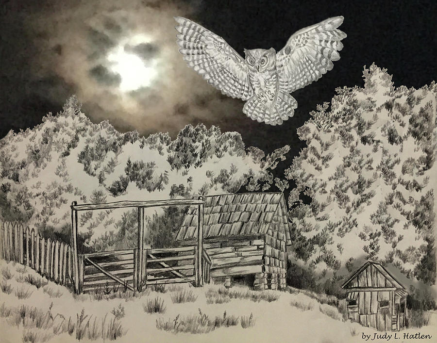 Owl Drawing - Owl In The Moonlight On Brush Mountain by Judy Hatlen