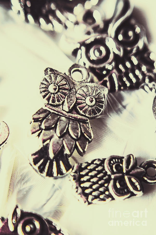 Jewelry Photograph - Owl Pendants. Charms Of Wisdom by Jorgo Photography - Wall Art Gallery