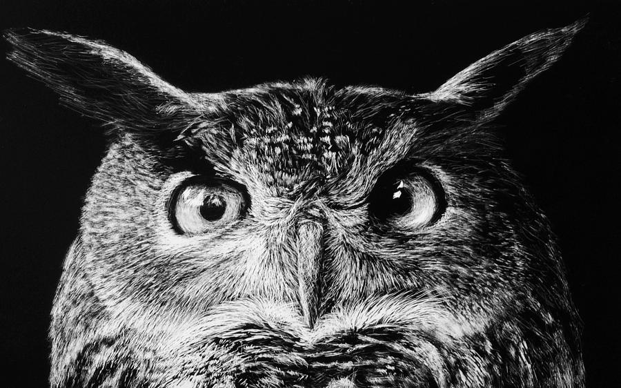 Scratchboard Drawing - Owl Portrait - Negative by Nolan Clark
