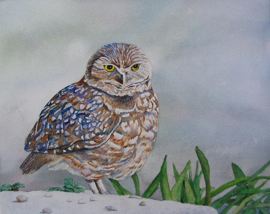 Owl Painting - Owl by Sharon Farber