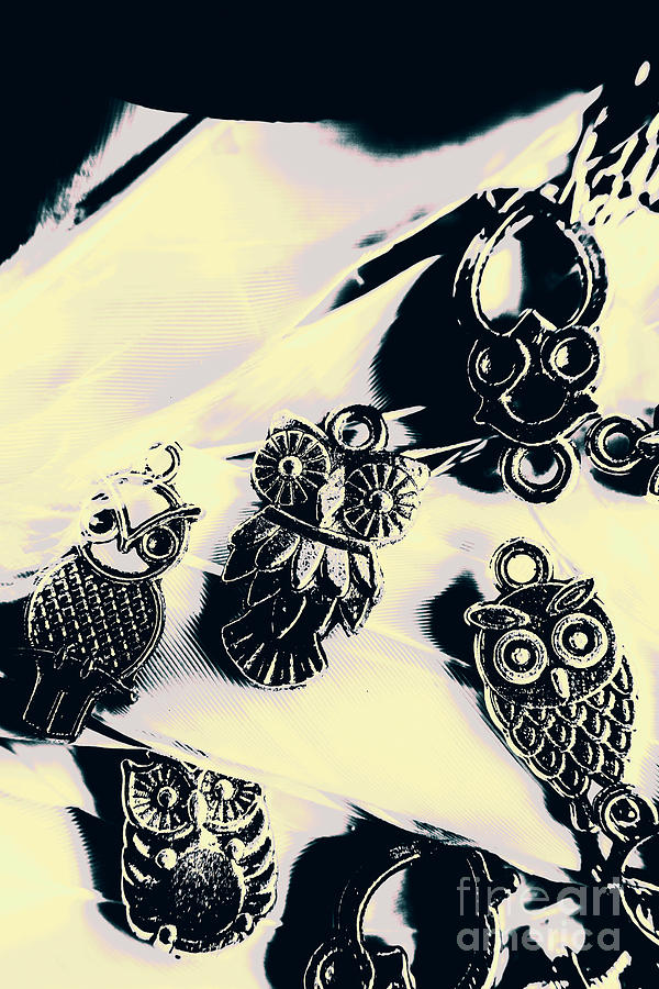 Old Photograph - Owls From Blue Yonder by Jorgo Photography - Wall Art Gallery