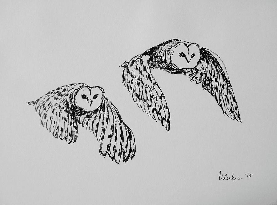 flying owl drawing owls in flight by victoria lakes