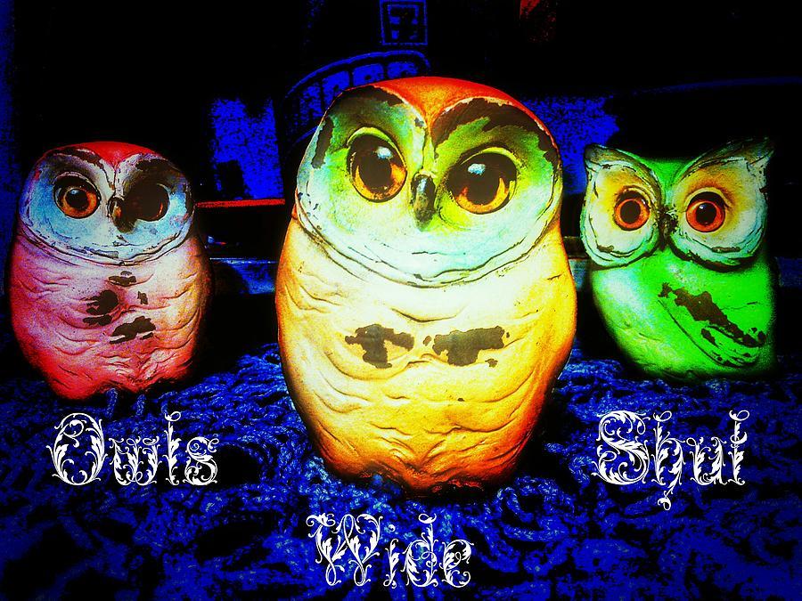 Owls Photograph - Owls Wide Shut by Eddie G