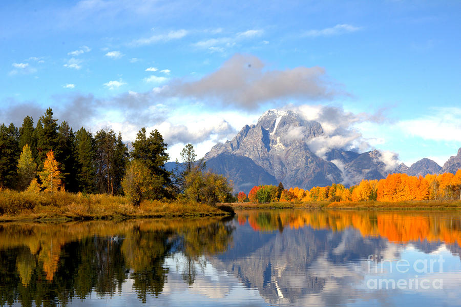 Mt Moran at Oxbow Bend by Cynthia Mask