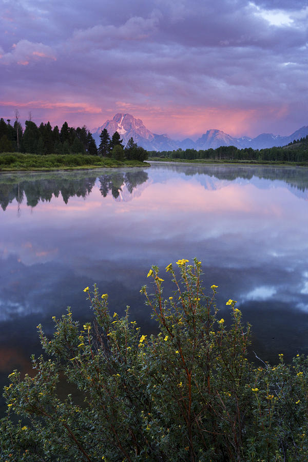 Wyoming Photograph - Oxbow Bend by Eric Foltz