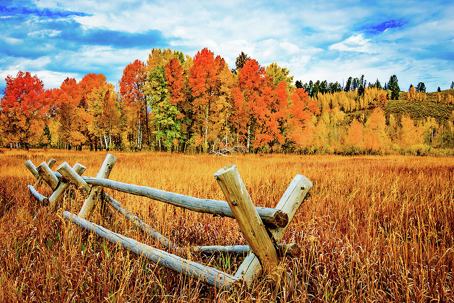 Oxbow Bend Photograph - Oxbow Bend Fall Color by Norman Hall
