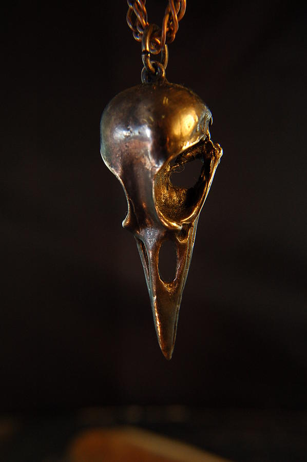 Oxidized Bronze Raven Skull Pendant Jewelry by Michael  Doyle