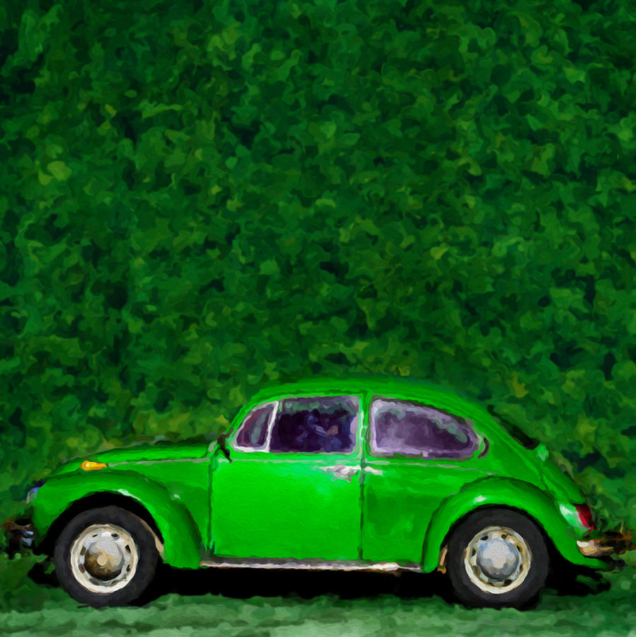Vw Photograph - Oyama Bug by Rod Sterling
