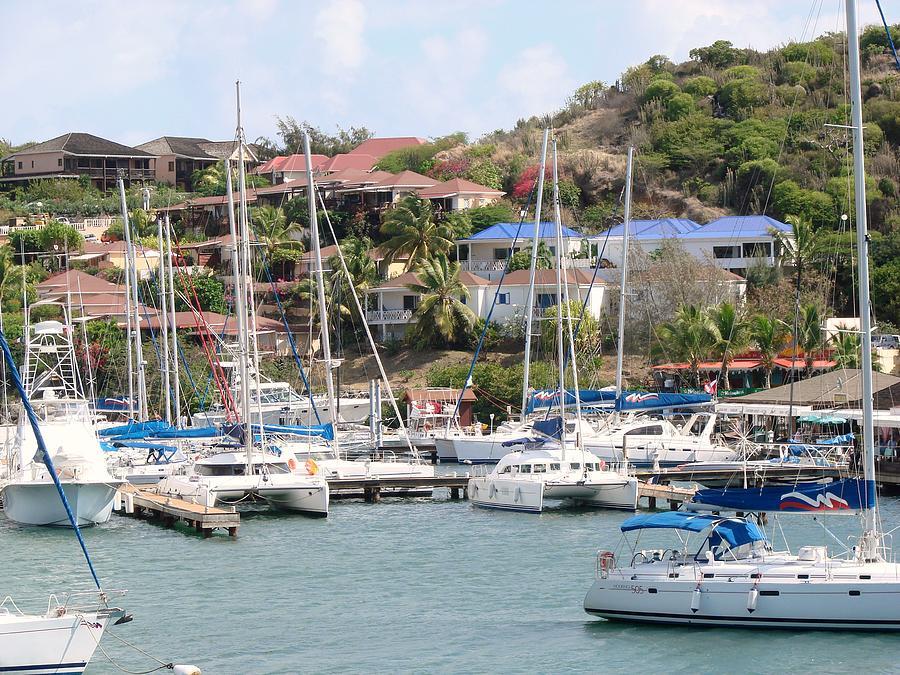 Caribbean Photograph - Oyster Bay Marina by Margaret Bobb