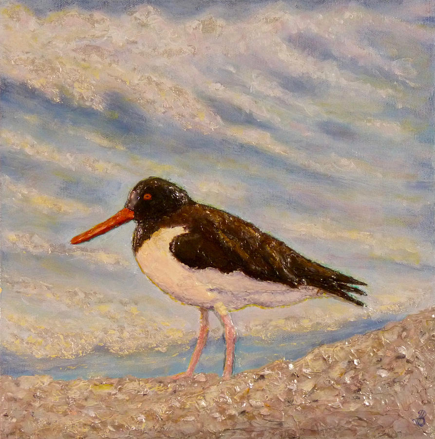 Oyster Catcher by Joe Bergholm