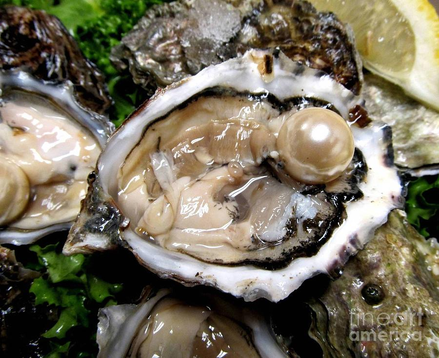 the oyster and the pearl In william saroyan's play the oyster and the pearl there is a lot of symbolism the theme of the play is to take it easy and relax and life will be much happier harry van dusen is a barber that has a philosophy of take it easy.