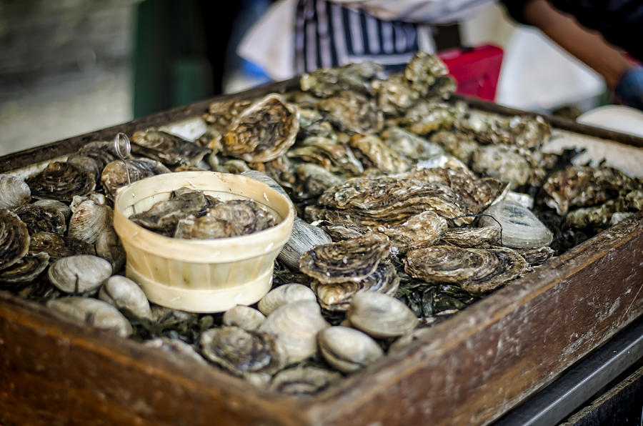 Oysters Photograph - Oysters At The Market by Heather Applegate