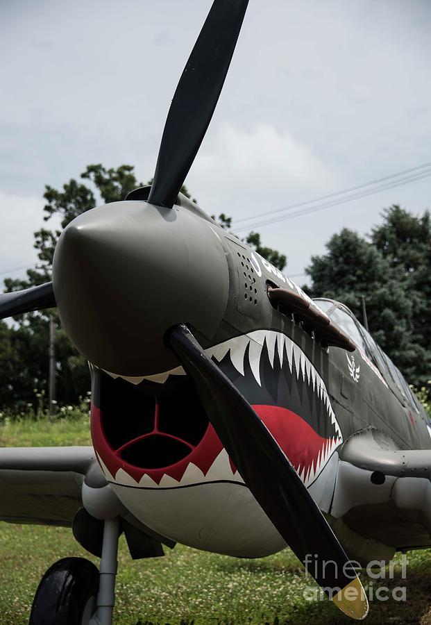 Flying Tigers Photograph - P - 40 Warhawk - 5 by David Bearden