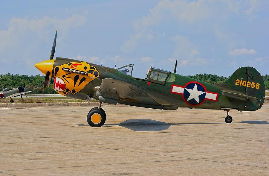 P-40 Warhawk Photograph by Robert Hayes