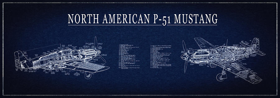 P 51 mustang fighter blueprint digital art by daniel hagerman mustang digital art p 51 mustang fighter blueprint by daniel hagerman malvernweather Gallery