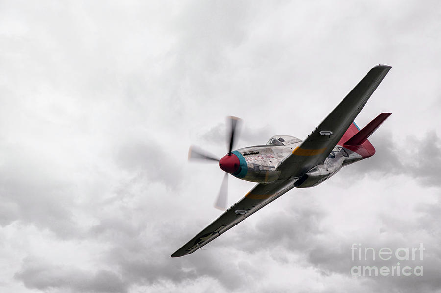 P 51 Mustang Red Tails
