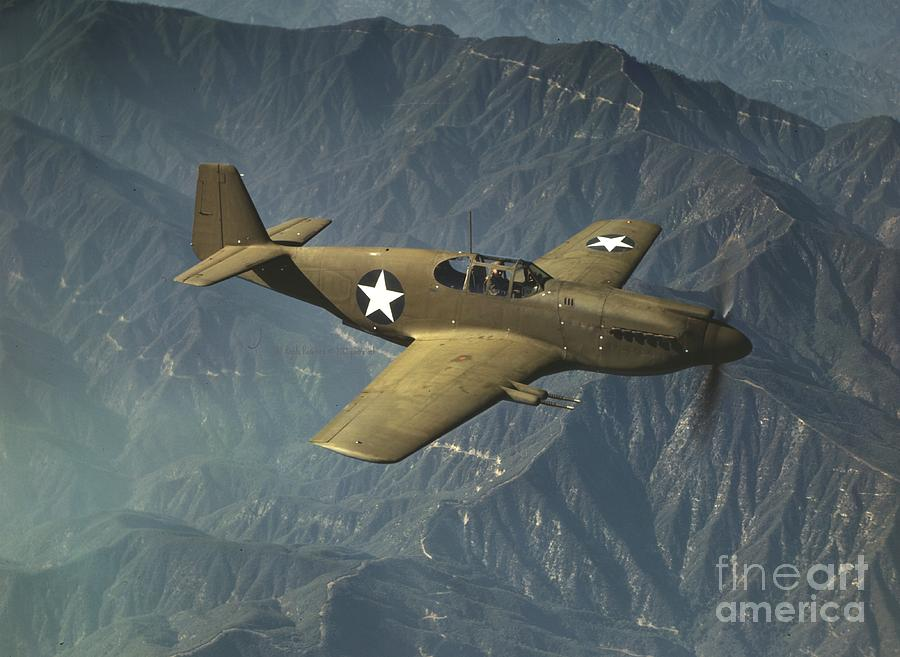 P51 Mustang In Flight Photograph - P51 Mustang In Flight by Padre Art