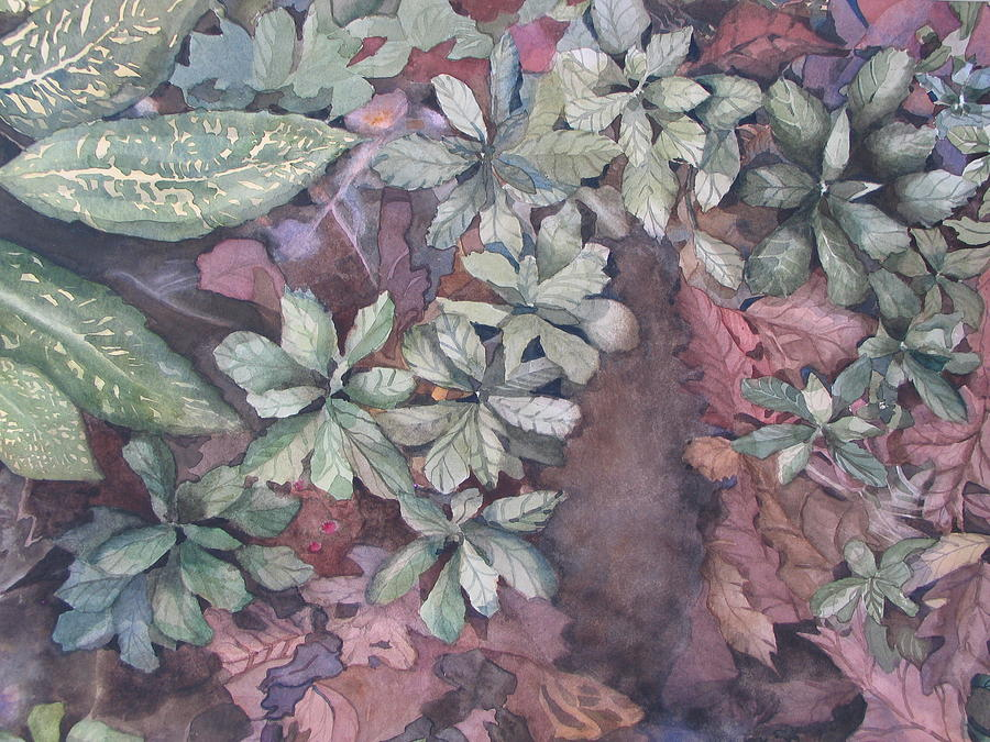 Watercolor Painting - Pachysandra Pathway by Carole Poole