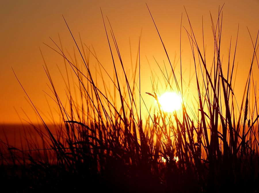 Pacific Beach Sunset Photograph
