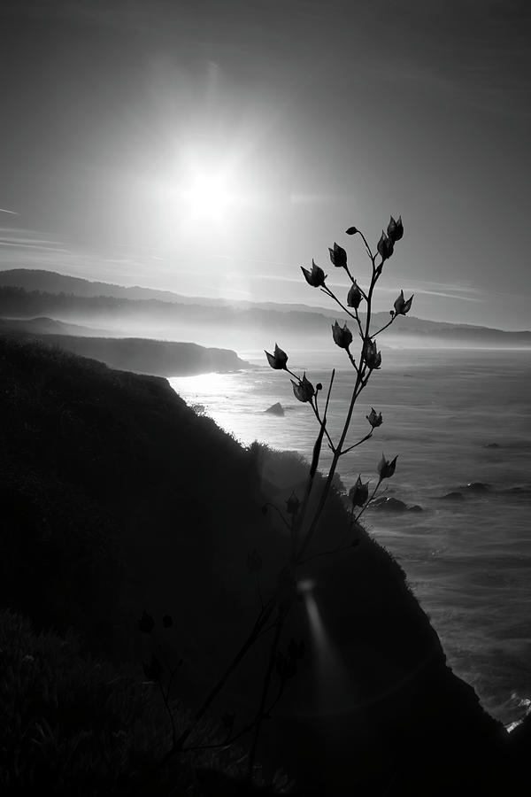 Pacific Coast B/W by Wes Jimerson