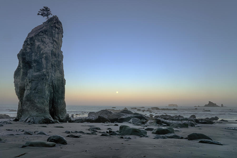Olympic National Park Photograph - Pacific Coast Moonset  by Geoffrey Ferguson