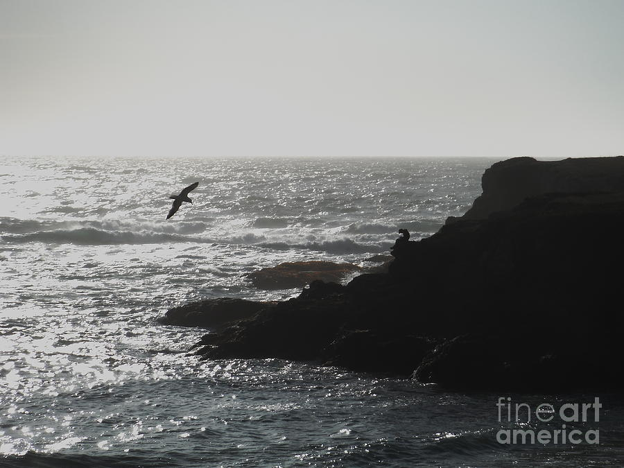 Pacific Coast Texting by Paddy Shaffer