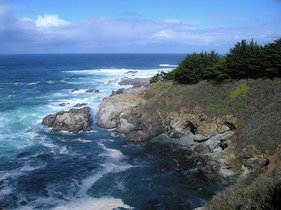 California Photograph - Pacific cove by Lea Rhea Photography