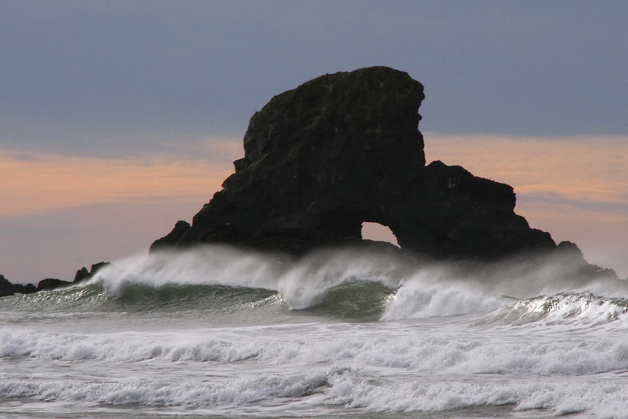 Waves Photograph - Pacific Northwest Waves by Wes and Dotty Weber