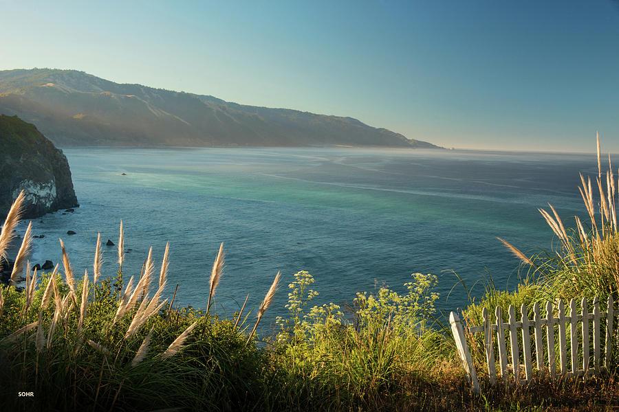 Pacific Ocean, Big Sur by Dana Sohr