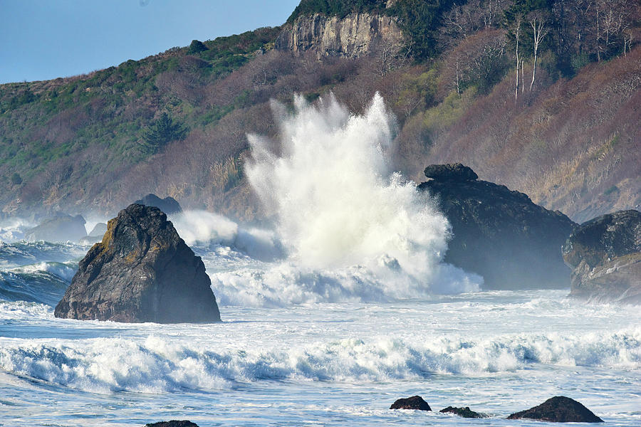 Shore Photograph - Pacific Ocean Waves by Paul Freidlund