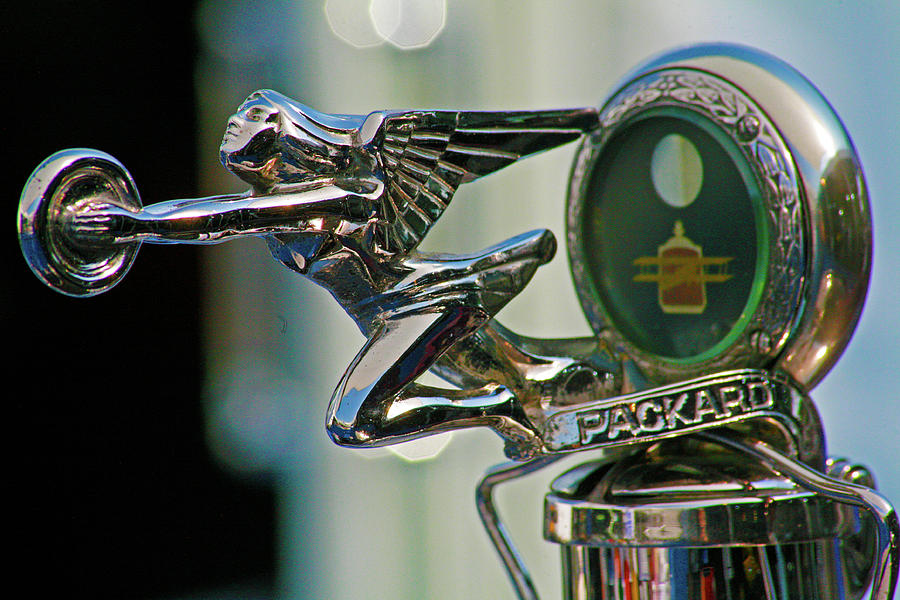 Vintage Hood Ornament Photograph - Packard Hood Ornament by Ave Guevara