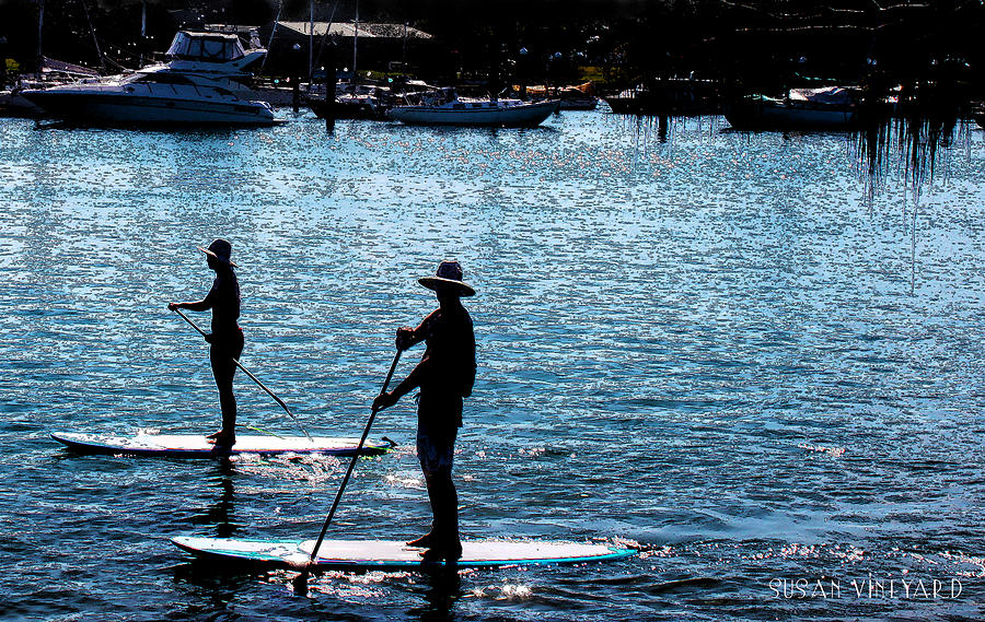 Wave Photograph - Paddle Boarding In The Marina by Susan Vineyard