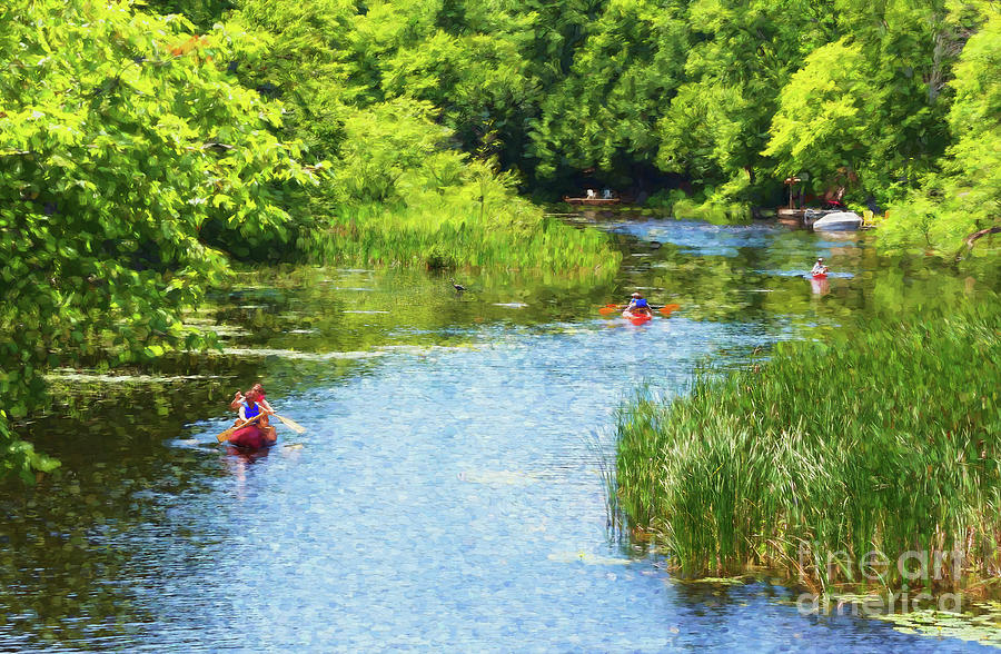 Nature Photograph - Paddling On A Calm Creek by Les Palenik