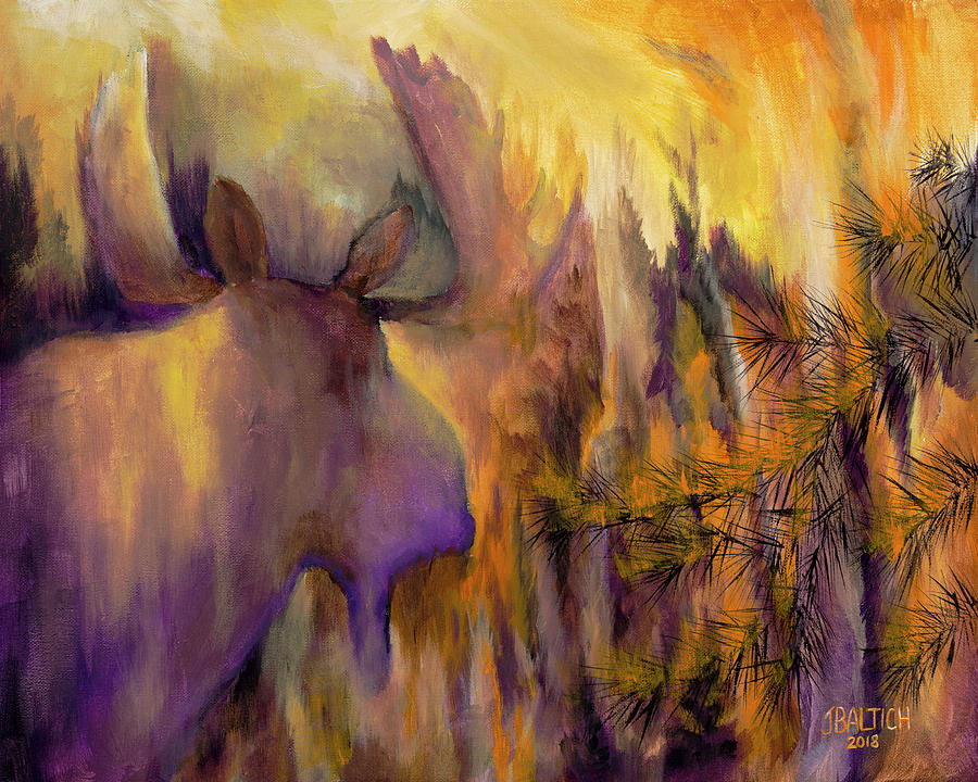Pagami Fading by Joe Baltich