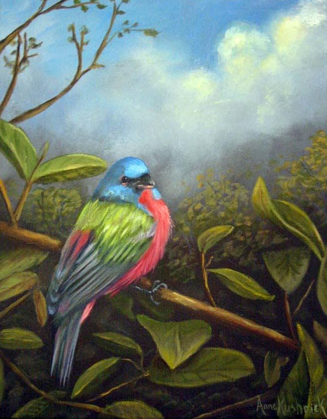 Birds Painting - Painted Buenting by Anne Kushnick