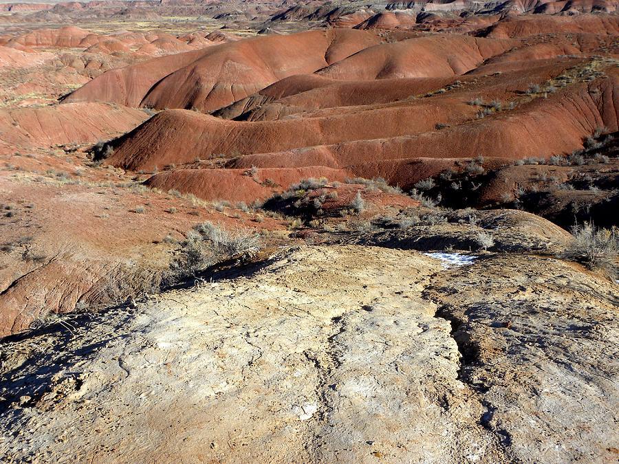 Landscape Photograph - Painted Desert 8 by Patricia Bigelow