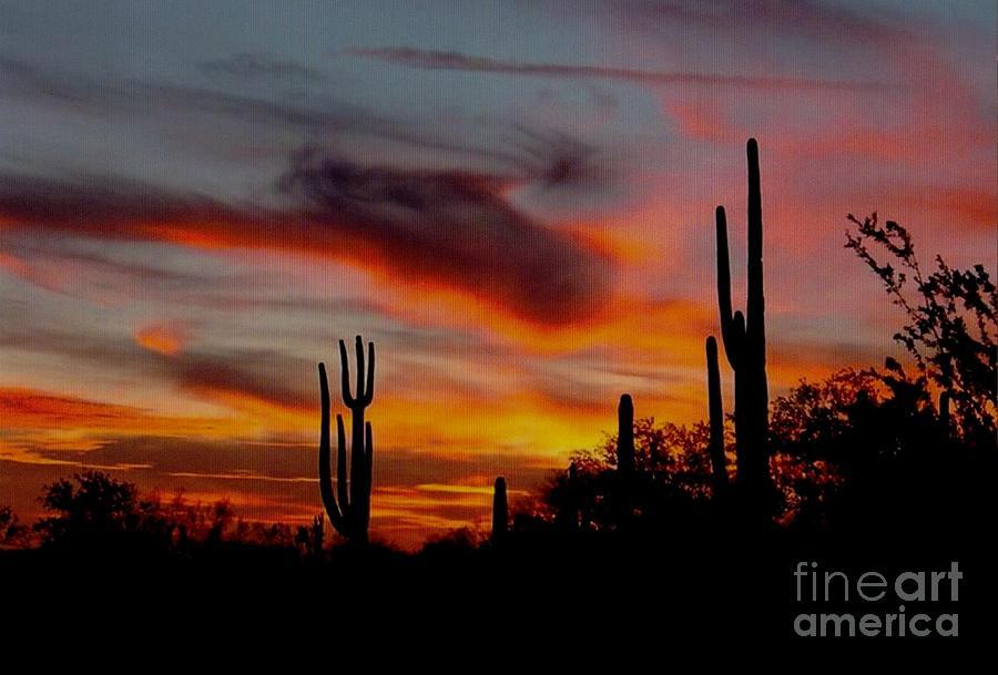 Painted Desert Sunset Mixed Media