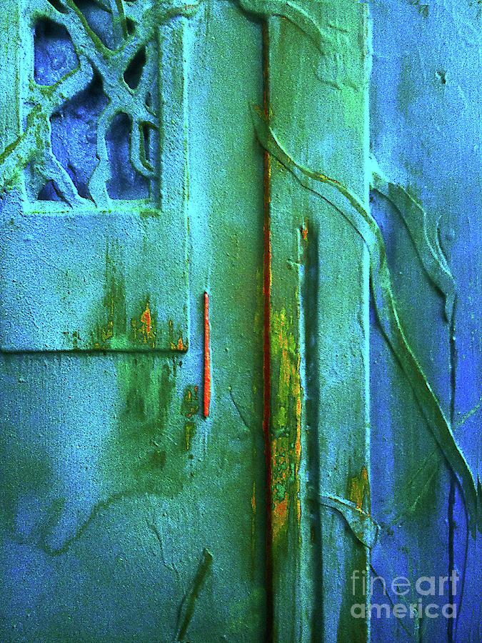 Painted Door 2 by Frank Merrem